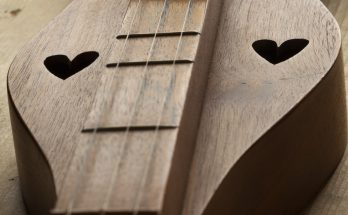Appalachian dulcimer close up